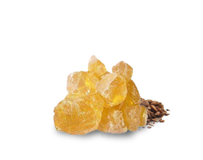 Natural Gum Rosin (Colophony/Pine resin)
